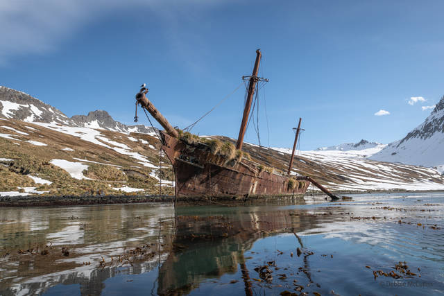 Abandoned Boats, Ocean Harbor, October 16 2019, South Georgia, Zodiak Excursion,m Bayard