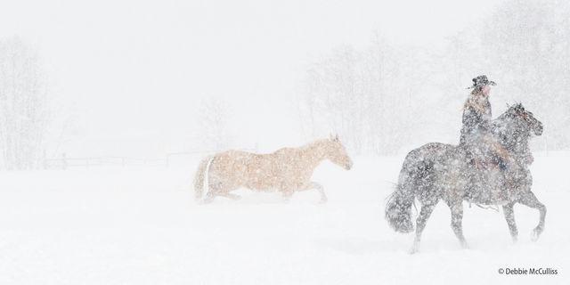 DDD Ranch, February 2018, High Key Images, Horses, Kalispell, Montana, Triple