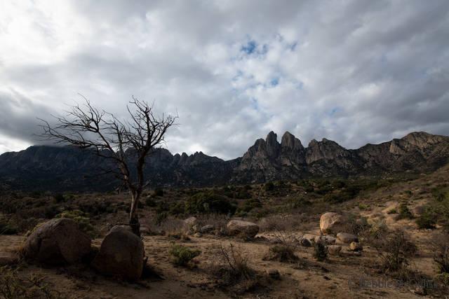 Organ Mountain Desert Peaks Monument, steepest mountain range, western United States