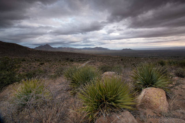 Organ Mountain Desert Peaks Monument, New Mexico, desert, national monument, dark and jagged mountains.