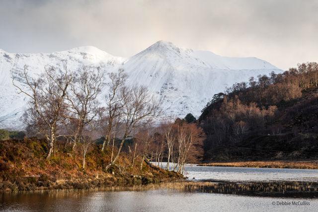 Scotland, March, Winter
