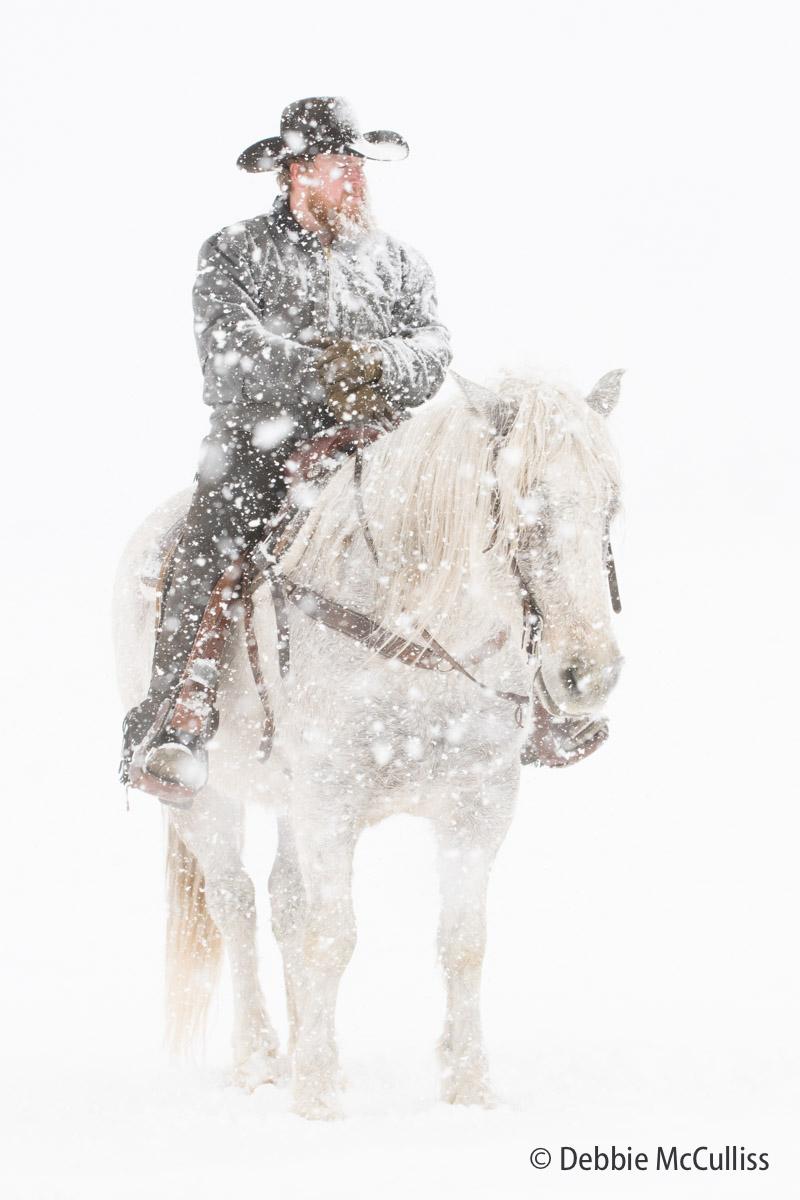 DDD Ranch, February 2018, Kalispell, Montana, horses, cowboy, portrait, cowboy, horse, photo