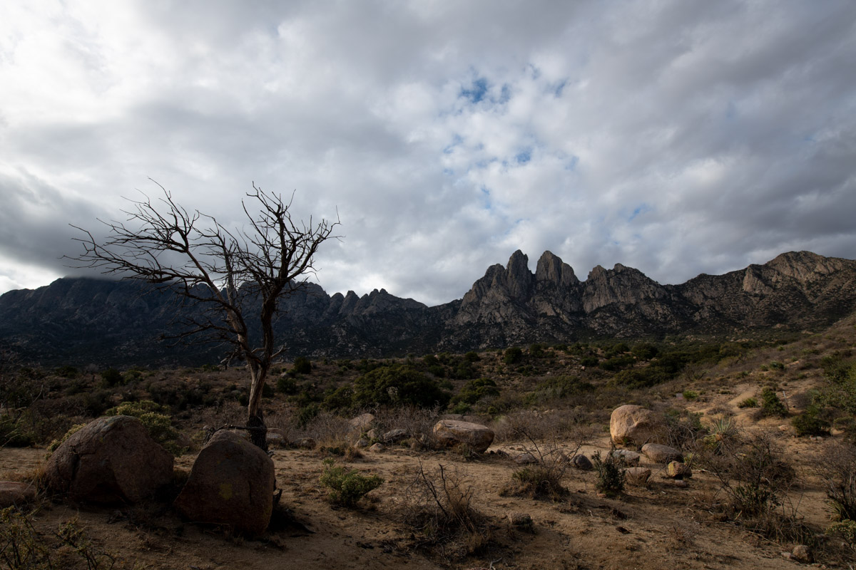 Organ Mountain Desert Peaks Monument, New Mexico, December, photo