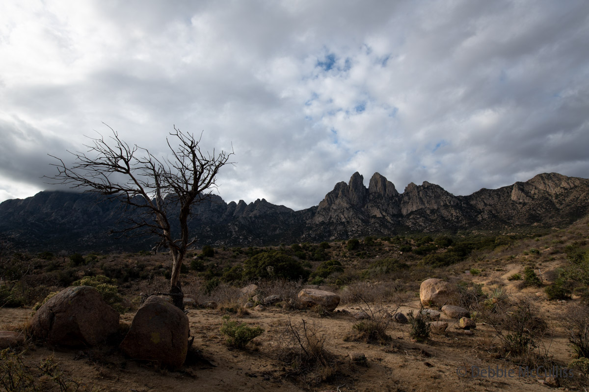 Organ Mountain Desert Peaks Monument, steepest mountain range, western United States, photo