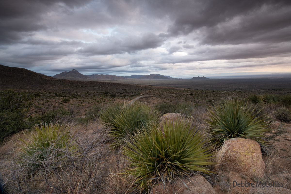 Organ Mountain Desert Peaks Monument, New Mexico, desert, national monument, dark and jagged mountains. , photo