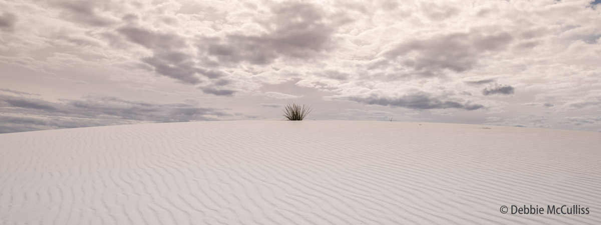 White Sands National Monument, New Mexico, photo